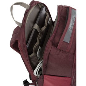 Craghoppers Backpack 20l, brick red